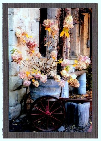 Greeting Cards Fall Flowers2