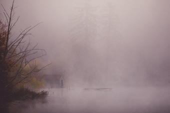 Cottage Lake Fog-101
