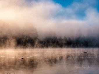 Cottage Lake Sun and Fog-8